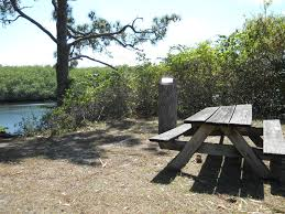 which florida state parks are open find out here protecting