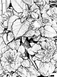 41 gardens color embroidery images