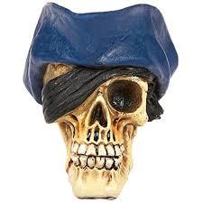Halloween Skull Decorations Best 25 Skull Model Ideas On Pinterest Skull Anatomy Jordan