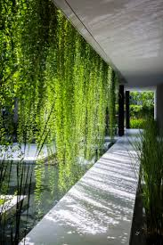 best living walls ideas on pinterest wall gardens vertical garden