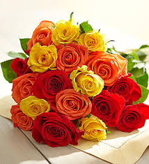 roses colors best colors for your best friends from roseforlove
