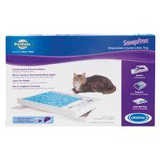 cat supplies kitten accessories u0026 products petsmart
