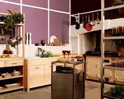 Kitchen Design Ideas 2013 Great Kitchen Design Ideas Kitchen Decor Design Ideas