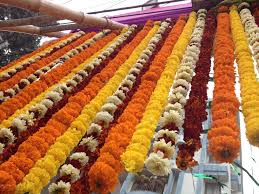 Indian Wedding Garland Price 38 Best Indian Bridal Images On Pinterest Hindus South Indian