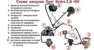 opel sintra 2 2 16v схема вакума страница 2 sintra опель клуб первый российский