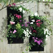 wall ideas hanging wall planters hanging wall planters for
