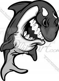 killer whale mascot cartoon vector clipart image team clipart