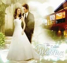 twilight wedding dress weddingdressespro the stunning twilight wedding dress