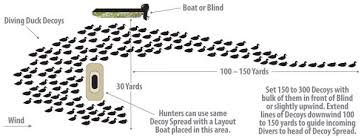 How To Make A Duck Blind Go Take A Dive Big Open Water Hunts For Diving Ducks Is What