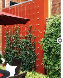 garden design contemporary outdoor oasis dividing wall