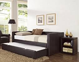 Modern Daybed With Trundle Shocking Marvelous Modern Daybed With Pop Up Trundle Pics For Beds