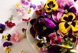 flowers edible edible flowers adding color and flavor to local dishes