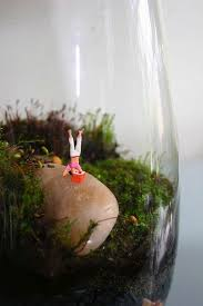 254 best terrariums images on pinterest terrariums air plants