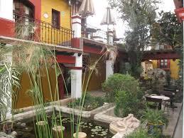 herbal plant medicine u0026 cultural tour u2013 aurora adventures llc