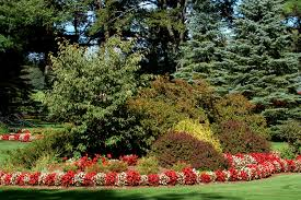 colorful flower gardens flower borders ideas to make your landscaping sizzle