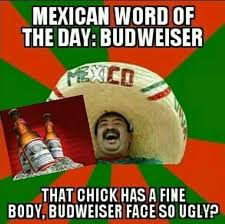 Spanish Word Of The Day Meme - 113 best mexican word of the day images on pinterest ha ha