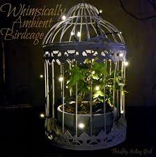 Birdcage Home Decor Whimsically Ambient Birdcage With Ivy And Lights Hometalk