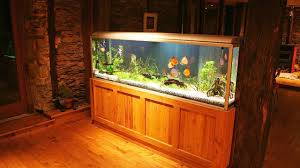Aquarium For Home Decoration How To Maintain A Big Fish Tank Howcast The Best How To Videos