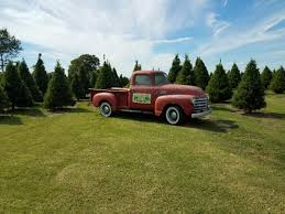 growers currently selling trees christmas tree growers in arkansas