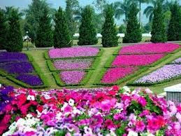 captivating designing a flower garden flower garden design ideas