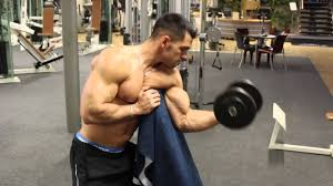 biceps concentration curls on the preacher bench youtube