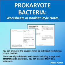 bacteria worksheets and answers interactive notebook