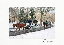 personalized boxed christmas cards winter carriage ride central park new york city christmas