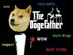 Doge Pronunciation Meme - 227 best oh such doge so wow much meme images on pinterest funny