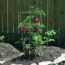 Panacea Trellis Panacea 89723 Tomato And Plant Support Cage Galvanized Set Of 10