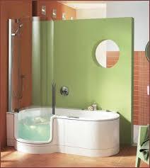 4 Foot Bathtub Shower Walk In Bathtub And Shower Combo Home Design Ideas