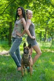 belgian shepherd louisiana http all about belgian malinois dog breed com belgian