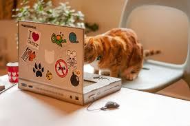Cat Scratchers Cardboard Cat Scratch Laptop Cardboard Toy For Geeky Cats