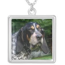 bluetick coonhound dander coonhound jewelry zazzle