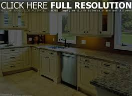 cool kitchen remodeling designs home design image interior amazing