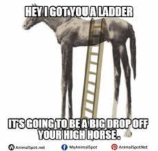 Soon Horse Meme - horse memes