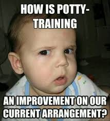 Potty Training Memes - 12 potty training memes to keep you laughing instead of crying