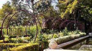 star jasmine on trellis di vine intervention the sculptures of terratrellis add chic