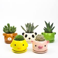 juicy pets diy animal pots for succulents juicykits com
