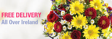 free flower delivery flowers dublin flowers ireland florists dublin flower delivery