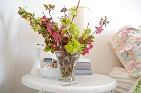 Frugal Flowers - ivy nest frugal flowers