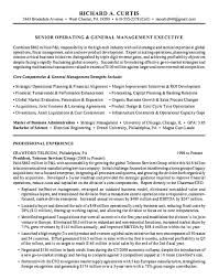 Resume Examples For Management by Executive Summary Resume Examples