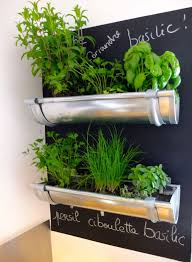 Idee Decoration Cuisine by Plante Herbe Aromatique Idee Decoration Diy Do It Yourself Cuisine