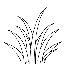 coloring pages grass