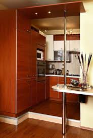 Design Ideas For Galley Kitchens Alumunium Cabinet For Small Galley Kitchen Design The Best