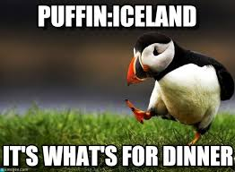 Iceland Meme - what s for dinner iceland unpopular opinion puffin meme http