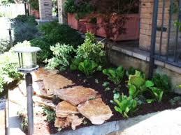 giardini rocciosi in ombra produzione vendita e piantumazione di piante ornamentali giovani