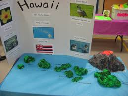 Hawaii State Map by Hawaii 2015 State Float Projects Pinterest Hawaii