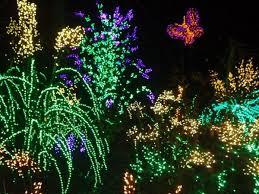 Botanical Garden Bellevue Nov 25 Garden D Lights 2017 Botanical Garden