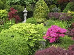 Shrub Garden Ideas Tips On Placing Shrubs In Your Garden The Tree Center