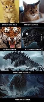 Iceland Meme - english grammar french grammar arabic grammar icelandic grammar